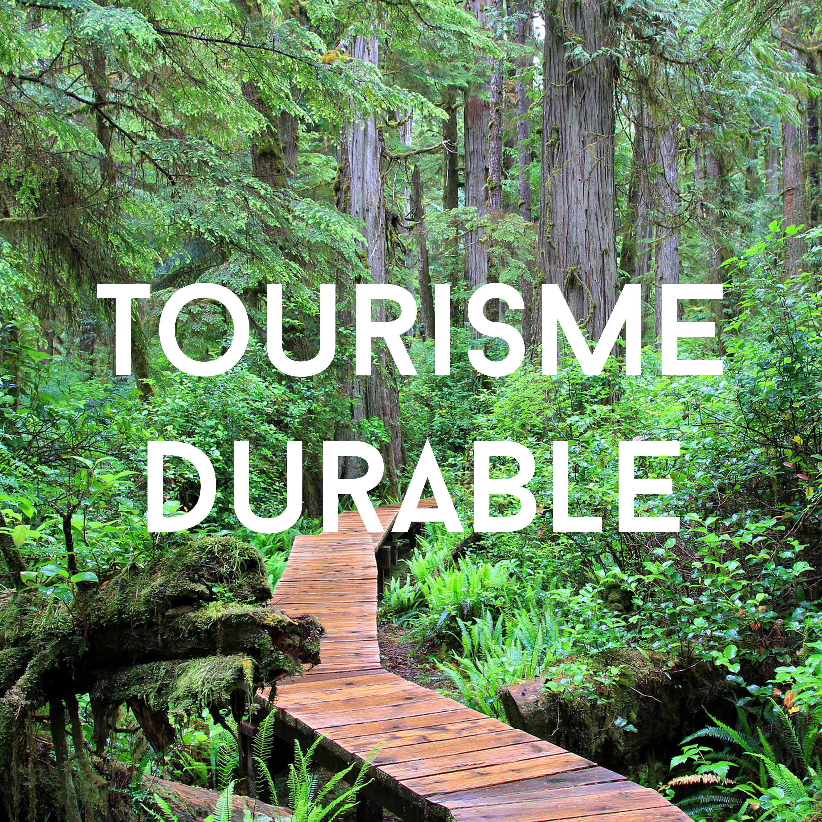 sustainable_tourism