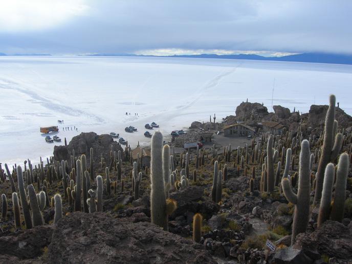 Vue sur le Salar de Uyuni du sommet d'Isla Incahuasi.