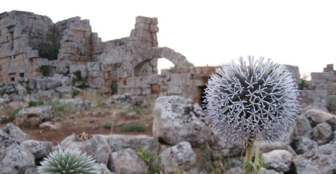http://fr.unesco.org/sites/default/files/styles/img_688x358/public/syria_two.jpg?itok=OWy6Sftl