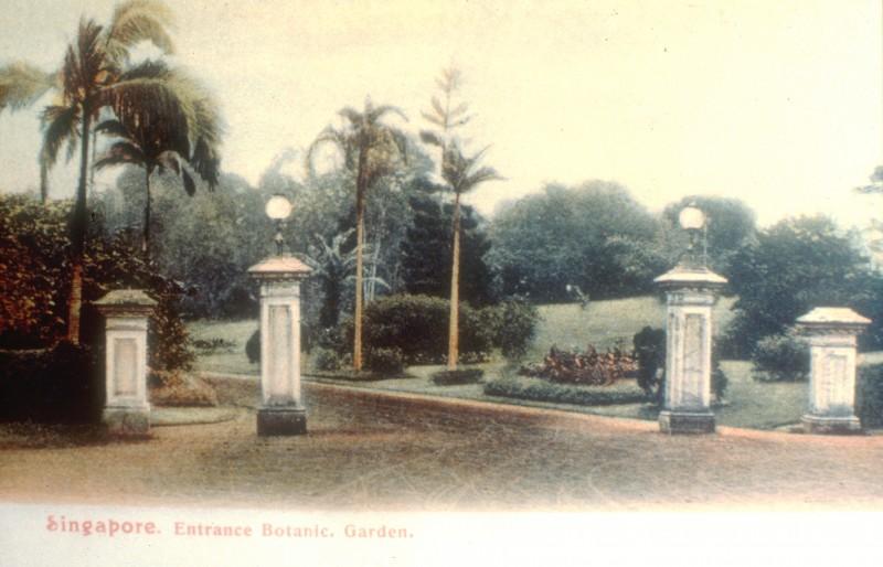 Gallerie whc 2015 jardin botanique de singapour for Au jardin singapore botanic gardens